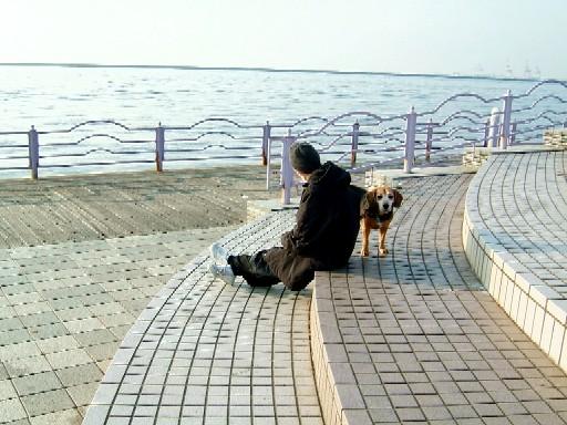 休日の散歩.jpg
